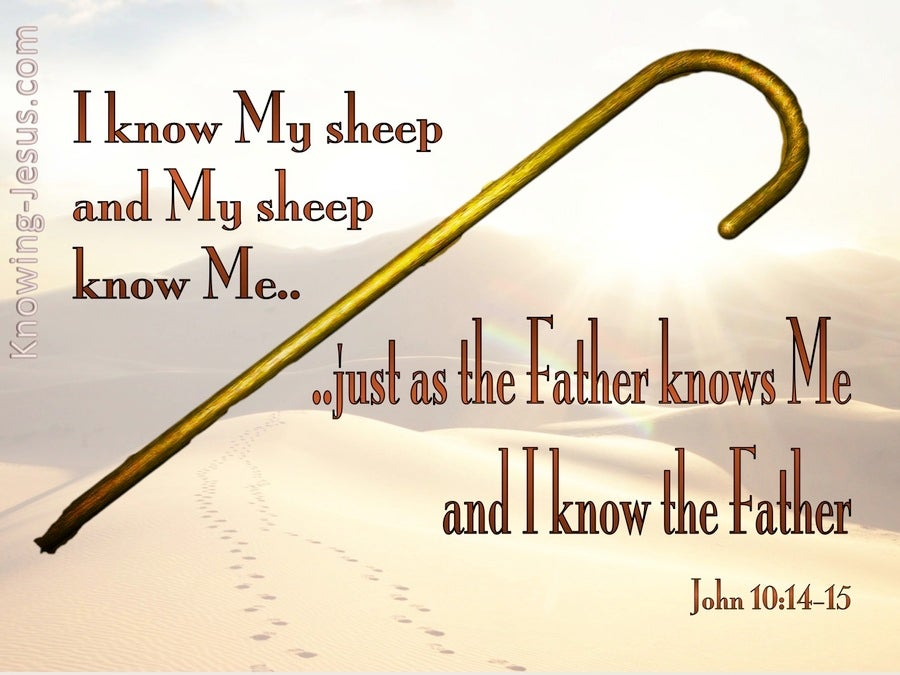 John 10:14 I Know My Sheep And My Sheep Know Me (white)